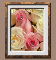 Wedding Bouquet Close Up - Cream and Pink Roses